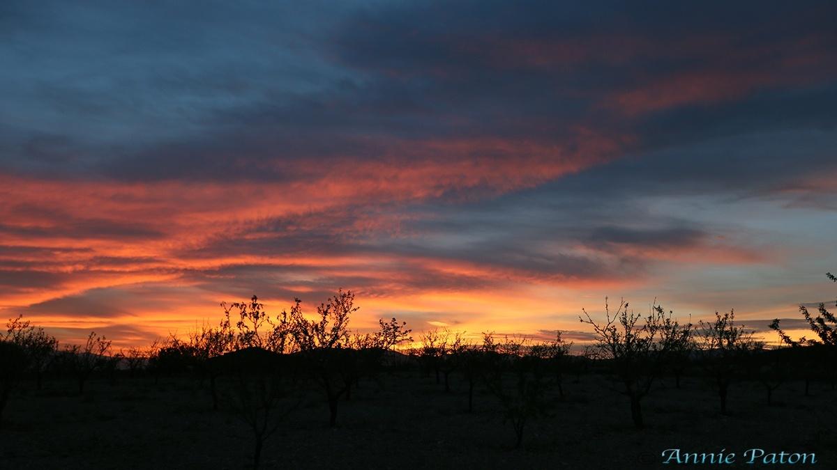 losguillenes-sunsets3.jpg
